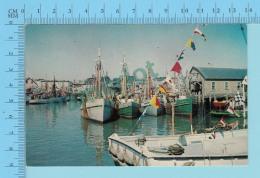 Fleet At Harbor   -  2 Scans - Altri