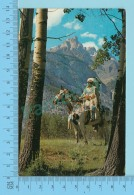 The Canadian Indian On A Horse In Wood -  2 Scans - Indiens De L'Amerique Du Nord