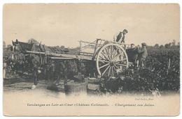 CANDE SUR BEUVRON ( 41 - Loir Et Cher ) - Vendanges - Château Colivault Chargement Des Jalles ( Attelage , Personnes ) - Other Municipalities