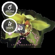 CENTRAFRICAINE 2014 SHEET ORCHIDS FLOWERS ORCHIDEES FLEURS ORCHIDEEN BLUMEN Ca14503b - Central African Republic