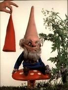 NAINS DE JARDIN - Gnomes - - Altri