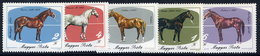 HUNGARY 1985 Horse Breeding  MNH /**.  Michel 3766-70 - Horses