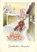 Pigs Pulling A Boy On A Sled, New Year, Old Bigger Sized Postcard - Pigs