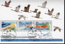 Bund Block 36 Nationalpark Vorpommersche Boddenlandschaft Gestempelt Used Mit ESST Bonn - [7] West-Duitsland