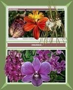 Mozambique - Postfris / MNH - Sheet Orchideen 2017 - Mozambique