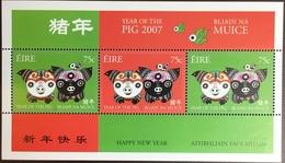 Ireland 2007 Year Of The Pig Minisheet MNH - Neufs