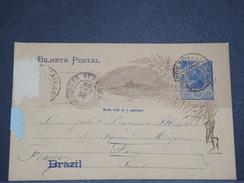 BRÉSIL - Entier Postal De Rio Pour Paris En 1902 - L 7012 - Entiers Postaux