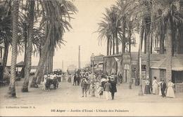 JARDIN D'ESSAI. OASIS DES PALMIERS - Alger