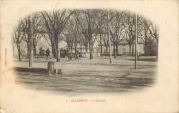 REALMONT - LE BOSQUET - Realmont
