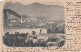 Slovénie - Bled - Veldes - 1903 Postmarked Veldes Venezia - Slovenia