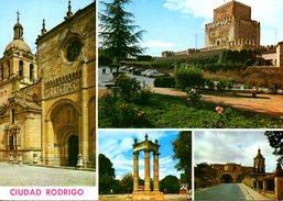 ESPAGNE. Carte Postale écrite. Ciudad Rodrigo. - Salamanca