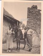 Aosta Champorcher Trasporti Mulo Fotografica 8,5 X 12 Luglio XIV - Non Classificati