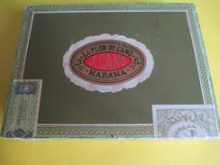 Boite De Cigare Vide Pour Collection/La Flor De  Cano/Tabacos/Habana/Vers 2010                 CIG35 - Other