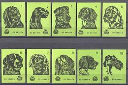 MATCHBOX LABELS / SAFETY MATCHES - Dog, Hund, Chien, DRAVA Factory Osijek, 10 Pcs - Boites D'allumettes - Etiquettes