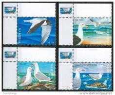 NAMIBIA 2006 - Gulls Fauna Uccelli Birds Vogel Oiseaux  Mi. Serie Cpl. 4v.  Nuovi** Perfetti - Namibia (1990- ...)