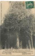 30434 - CRESSY OMENCOURT - FOREST L ABBAYE - Ohne Zuordnung