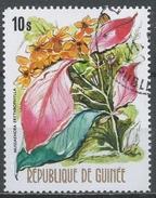 Guinea 1974. Scott #670 (U) Mussaendra Erythrophylia, Flower * - Guinée (1958-...)