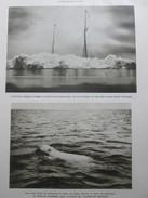 L Expédition Amundsen Vers Les Poles Pole Nord  Baie Du Roi  Norvege 1925 - Vieux Papiers