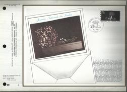 N° : 528 S  DU CATALOGUE CEF. N° 349 / SOIE. JOURNEE DU TIMBRE . 08 MARS 1980 . PARIS . - FDC