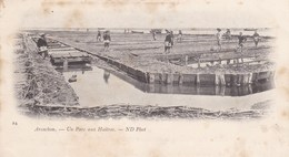 ARCACHON - GIRONDE - (30)  - CPA PRÉCURSEUR DE 1901 . - Arcachon