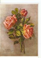 Postal 023351 : Virginie Waltenberger - Rosen - Postcards