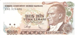 TURQUIE   5000 Turk Lirasi   (1985)   P. 197   (1. Sign.)   AUNC / UNC - Turquie