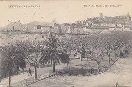 Cannes  - L'ancien Port - 1905     (A34-150104) - Cannes