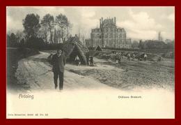 Belgique * Antoing  * Chateau Brebort  ( Scan Recto Et Verso) - Lessines
