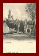 Belgique * Antoing  * Chateau   ( Scan Recto Et Verso) - Lessines