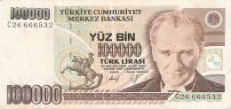TURQUIE   100,000 Turk Lirasi   (1991)   (2. Sign.)   P. 205 - Turquie