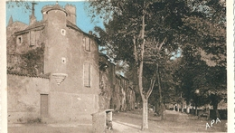 MONESTIES   ( 81 )     La  Place  De  Candeze  Et  Le  Château . - Monesties