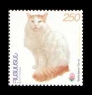 Armenia 1999 Mih. 361 Fauna. Turkish Van Cat (overprint China 1999) MNH ** - Armenien