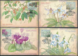 # Russia 2017 Maxicard Mi. 2424/2427 Flora Of Russia Sochi Arboretum (cans. In Sochi) - Maximum Cards