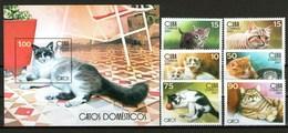 Cuba Francobolli Gatti Gatos Cats - Cuba