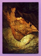 Grotta Di Bossea (Cuneo) Stalagmite Torrione Q. Sella - Cuneo