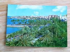 C.P.A. LIBYA : TRIPOLI : Public Gardens - Libye