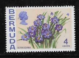 BERMUDA   USED # 258  FLOWERS USED - Bermudes