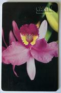 Orquídeas De Venezuela - Venezuela