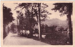 Nurieux Route Nationale Et Coteau De Mornay - Francia