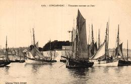 CONCARNEAU -29- THONNIERS RENTRANT AU PORT - Concarneau