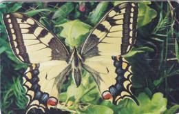 Czech Rep. C292, Butterfly Papilio Machaon, 2 Scans.