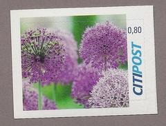 Privatpost - Citipost -  Diestel Blüte - Pflanzen Und Botanik