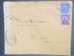 BRESIL - Enveloppe Pour La Suisse En 1917 Avec Contrôle Postal Militaire - L 7126 - Brésil