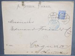 NORVÈGE - Enveloppe De Hamar Pour La France En 1895 - L 7131 - Briefe U. Dokumente