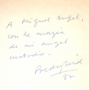 CUENTOS CON NIEBLA LIBRO AUTORA POLDY BIRD DEDICADO Y AUTOGRAFIADO POR LA AUTORA EDICIONES ORION AÑO 1987 175 PAGINAS - Actie, Avonturen
