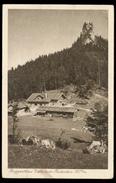 [032] Gasthof Galaun, Riederstein, Gel. 1925, Verlag Ostermann (Tegernsee) - Tegernsee