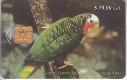 CUBA - PHONE CARD - CHIP   ***   PERROQUET  ***