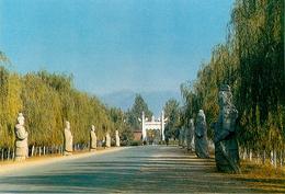 Chine - China - Ming Tombs - 10 Cartes Avec Pochette - Semi Moderne Grand Format - Bon état Général - Chine