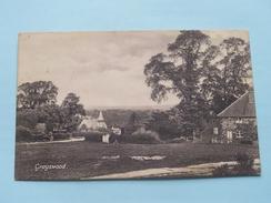 GRAYSWOOD ( Haslemere ) Anno 1915 ( Zie Foto's Voor Detail ) !!! - Surrey
