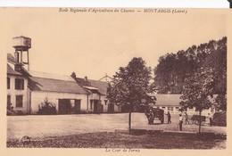 Montargis - Ecole D'Agriculture Du Chesnoy - La Cour De Ferme - Montargis